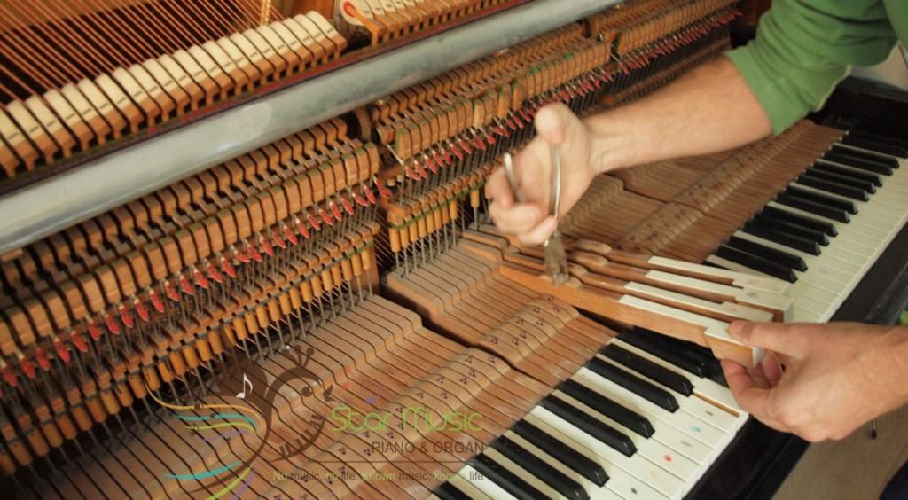 len-day-dan-piano-coi