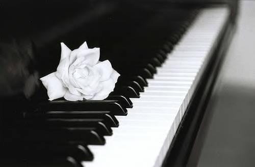 phim-dan-piano-1